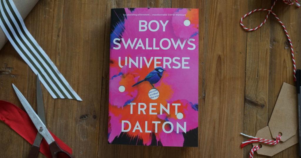 Boy Swallows Universe cover
