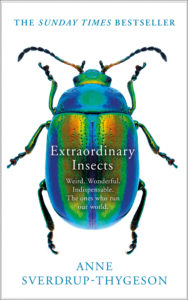 Extraordinary Life of Insects