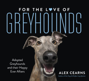 For the love of greyhounds