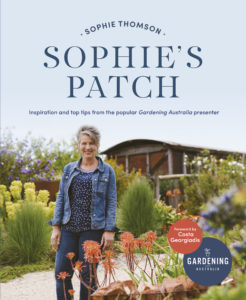 Sophie's Patch