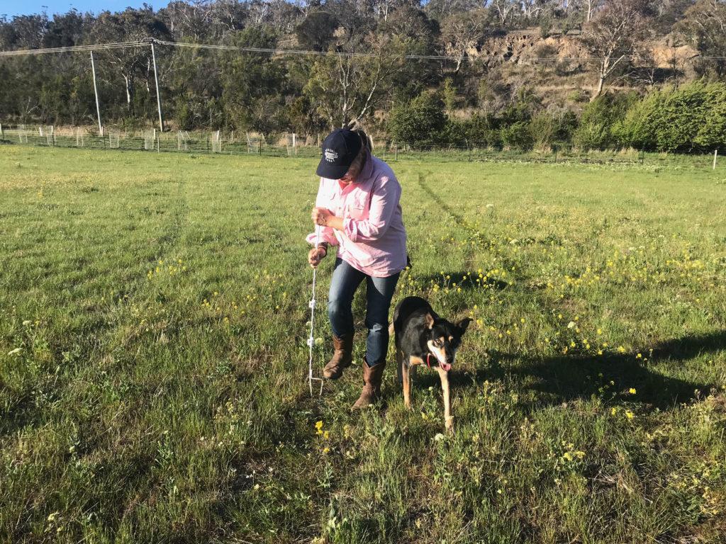 Rachael Treasure fitting a fence post